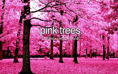 little-reasons-to-smile-love-pink-trees-Favim.com-490957