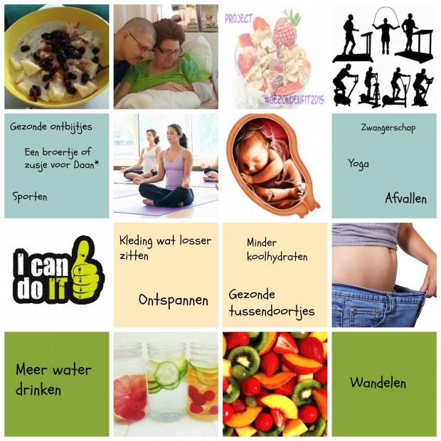 Motivatie gezondenfit2015